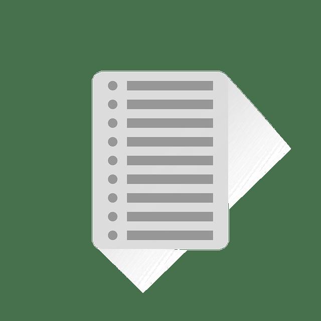 entrada tipo lista posicionamiento web